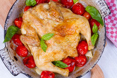 Whole roast chicken with tomatoes cherry, green basil and garlic. Stock Image