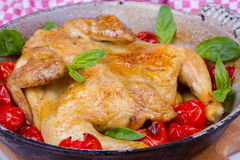 Whole roast chicken with tomatoes cherry, green basil and garlic. Royalty Free Stock Photography