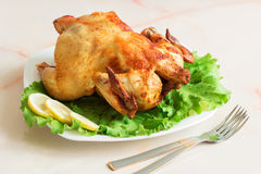 A whole roast chicken on a white plate. Grilled chicken on a white plate with fresh herbs and lemon Stock Photography