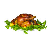 Whole roast stuffed chicken . Isolated. Stock Photo