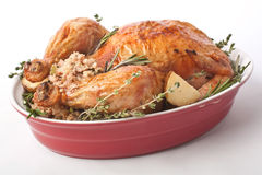 Whole Roast Turkey in a Red Dish. Whole Roast Turkey with Classic Stuffing and Rosemary in a Red Dish royalty free stock photo