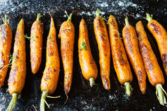 Whole roasted carrots with tails Royalty Free Stock Images