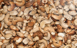 Whole Roasted Cashews Royalty Free Stock Image