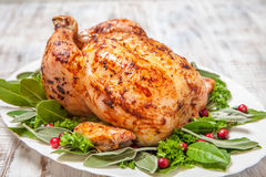 Whole Roasted Chicken for holidays Royalty Free Stock Photography