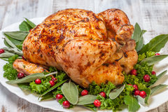 Whole Roasted Chicken for holidays Royalty Free Stock Images