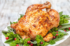 Whole Roasted Chicken for holidays Stock Images