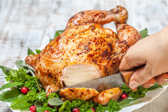Whole Roasted Chicken for holidays Royalty Free Stock Photos