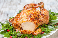 Whole Roasted Chicken for holidays Stock Photos
