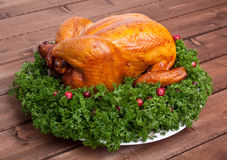 Whole roasted chicken with parsley Stock Image