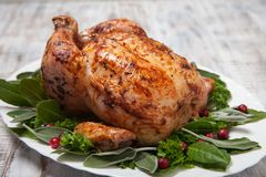 Whole Roasted Chicken for holidays Royalty Free Stock Image