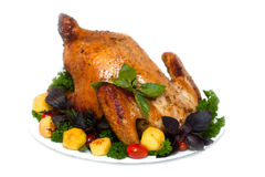 Whole roasted chicken with potatoes and herbs royalty free stock photos