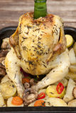 Whole roasted chicken. Whole rosted chicken on the glass with vegetables Stock Photo