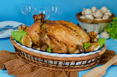 Whole roasted chicken stuffed with buckwheat and mushrooms. On a blue background Royalty Free Stock Photo