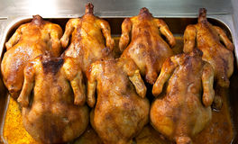 Whole roasted chickens. In sauce on a tray Stock Image
