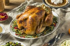 Whole Roasted Turkey Dinner For Thanksgiving. With All the Sides royalty free stock photography