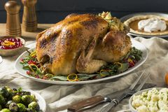 Whole Roasted Turkey Dinner For Thanksgiving. With All the Sides stock image