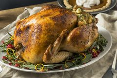 Whole Roasted Turkey Dinner For Thanksgiving. With All the Sides royalty free stock images