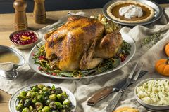 Whole Roasted Turkey Dinner For Thanksgiving. With All the Sides royalty free stock image