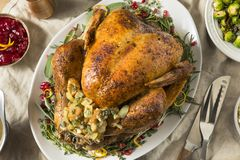 Whole Roasted Turkey Dinner For Thanksgiving. With All the Sides stock photography