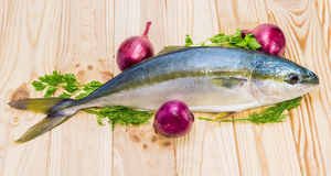 Whole round fish yellowtail and red onion on a wooden surface Royalty Free Stock Photography