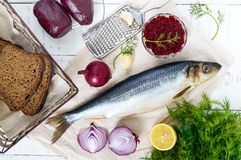 Whole salted herring with boiled beet, red onion, garlic, lemon, dill, rye bread. Stock Images