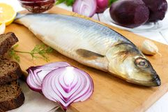 Whole salted herring with boiled beet, red onion, garlic, lemon, dill, rye bread. Stock Photos