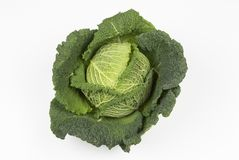 Whole Savoy Cabbage. On white background. See all my food & drink images here FOOD & DRINK royalty free stock photography