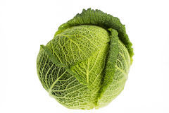 Whole Savoy Cabbage Stock Photo