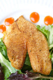 Whole season fillet of Tilapia stock photos
