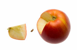 Whole, seed and quarter apple. Ripe apple cut-out isolated on white Royalty Free Stock Photo