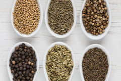 Whole seeds and spices Royalty Free Stock Photos