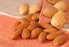 Whole and shelled almonds Stock Image