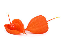 Whole and shelled winter cherries Royalty Free Stock Images