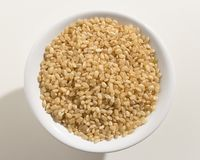 Whole Short Grain Rice Seed. Top view of grains in a bowl. White. Oryza sativa is scientific name of Whole Short Grain Rice Seed. Also known as Sushi Rice and stock image