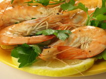 Whole shrimps with parsley, closeup Royalty Free Stock Photo