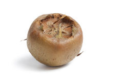 Whole single fresh ripe Medlar Stock Images