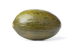 Whole single  Piel de sapo melon Stock Photos