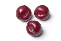 Whole single purple plums Stock Image