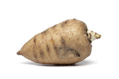 Whole single Turnip-rooted chervil Royalty Free Stock Photography