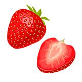 Whole and slice strawberry. Vector color flat illustration Stock Image