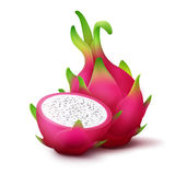 Whole and sliced dragon fruit. Vector whole and sliced vivid pink dragon fruit isolated on white background Royalty Free Stock Photos