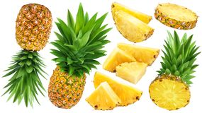 Whole and sliced pineapple isolated on white background. Pineapple collection. Whole and sliced pineapple isolated on white background Stock Photography