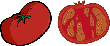 Whole and Sliced Tomato. One large tomato illustration with a sliced version Stock Images