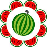 Whole and sliced watermelon arranged like a flower Royalty Free Stock Photography