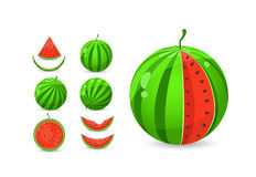 Whole and sliced watermelon set Stock Images