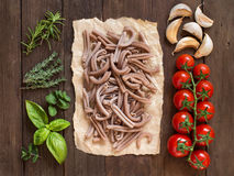 Whole spelt pasta, vegetables,  herbs and olive oil Royalty Free Stock Image
