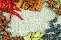 Whole spices frame Stock Photos