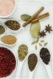 Whole spices and seeds. A selection of whole spices and seeds including cinnamon sticks, cardomom pods, star anise, bay leaves, black pepper, mustard seeds Stock Images