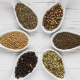 Whole spices and seeds in spoons Royalty Free Stock Photo