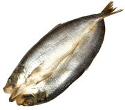 Whole Split Kipper. A whole smoked Manx style split kipper, isolated on a white background Royalty Free Stock Image